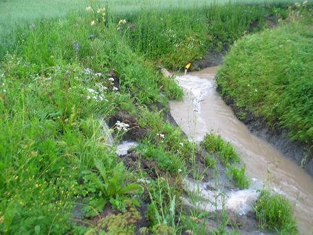 Sateet ovat kyllästäneet maat niin että vettä tulee salaojista putkien täydeltä ja vielä pintavaluntanakin. Maan vedenpidätyskyky on siis melko huono. Pintavalunnasta on tavoitteena päästä eroon maan rakennetta parantamalla ja samalla vähentää, tai ainakin hidastaa, salaojavaluntaa.